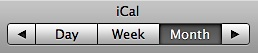 ical-views.jpg